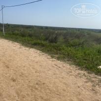 Азовский Дорога к пляжу.. по сторонам такие красоты - Фото отеля